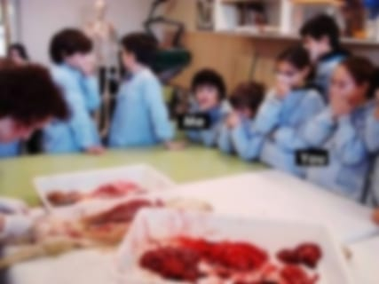 【閲覧注意】幼稚園で撮影された1枚の写真で分かる、「サイコパスの素質」