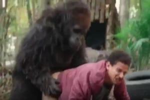 動物園でゴリラの檻に侵入して自撮りしてた男がゴリラにレ●プされるビデオwwwwww