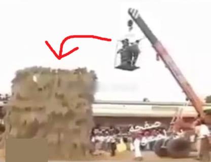 【閲覧注意】ヒンドゥー教の神である「牛」を殺した3人の男達の処刑方法、怖すぎる