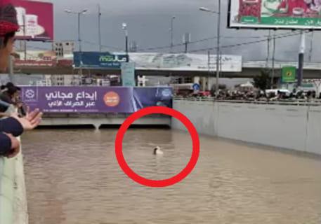 【閲覧注意】誰も泳げない国で、川で溺れてる人がいたらこうなるらしい(動画あり)