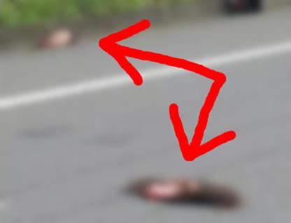【閲覧注意】夫婦、2人同時に斬首される(動画あり)