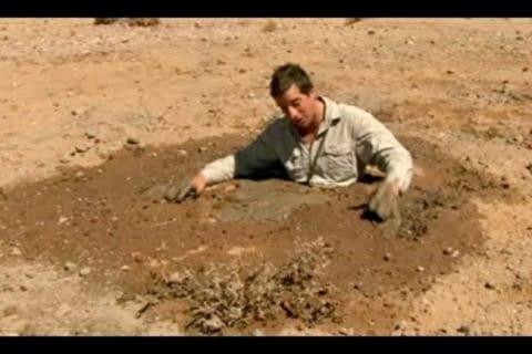 """【閲覧注意】""""底なし沼"""" で発見された人間の死体、ヤバすぎる"""