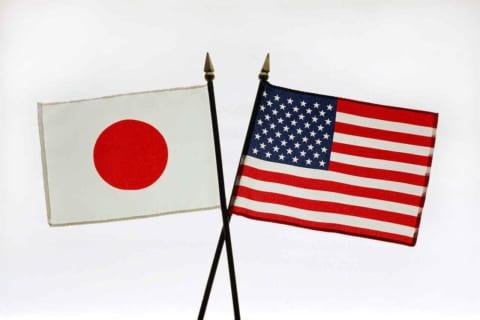 【衝撃】日本にはめちゃくちゃいる「あの生物」の巣がアメリカで発見され、全米が震える