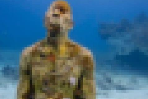 【閲覧注意】人間の死体を海底に沈めたらどうなると思う?凄いぞ…(画像あり)