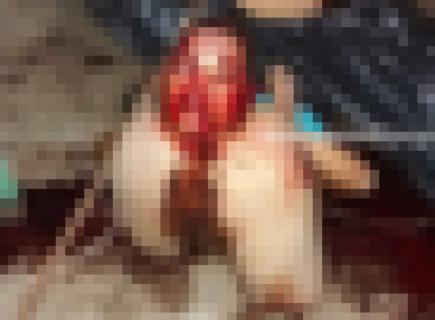 【超!閲覧注意】ギャング、拷問相手の頭を「肛門」から出してしまう…(画像あり)
