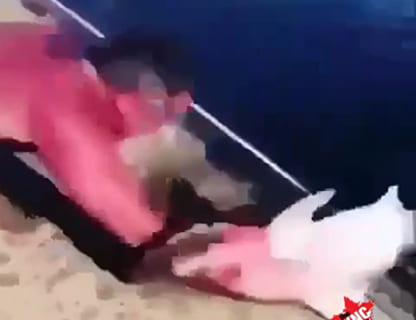 【衝撃映像】陸に上げたサメに近付いてはいけない理由・・・・・