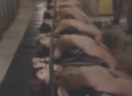 【拷問レ●プ】刑務所の♀の扱い。もうAVと変わらない…(動画)