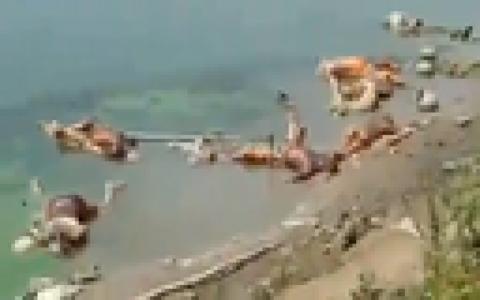 【閲覧注意】インドのガンジス川、ヤバい事になる(動画あり)