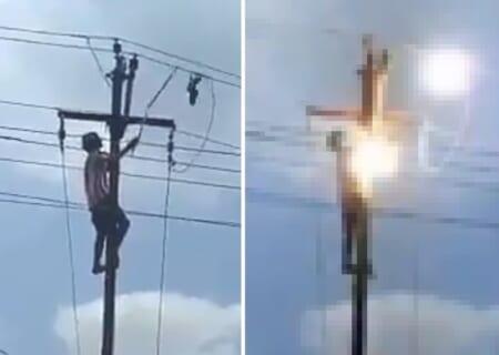 【閲覧注意】電線に絡まった鳥を助ける優しい少年 ⇒ 今から最悪な事が起こります…