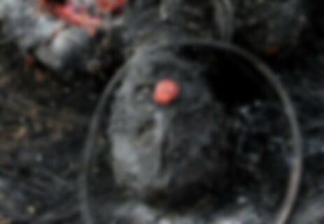 【閲覧注意】伝説の拷問、アフリカで復活・・・動画がヤバすぎる