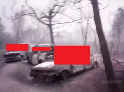 【閲覧注意】山火事の後、絶対に山に行ってはいけない理由(動画あり)