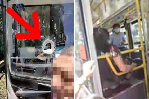 【閲覧注意】バスに飛んできた石、フロントガラスを突き破り乗客女性の頭を貫く