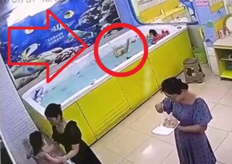 【閲覧注意】プールで母親が90秒、子供から目を離した結果・・・(動画あり)