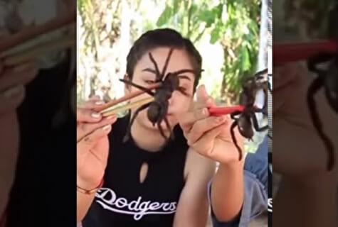 【閲覧注意】女さん「クモ食べまーすw」⇒ エゲツない毒グモでこうなる…(画像あり)